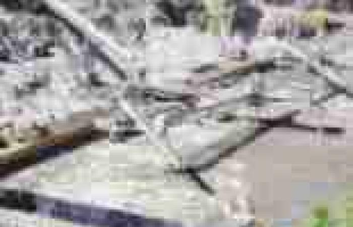 «الوطن» تكشف: «قنديل» منح شركة بناء السد الإثيوبى معلومات سرية فى 2011
