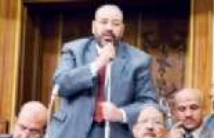 """""""الأمن القومي"""" بالشورى تستمع لأهالي المعتقلين المصريين في الإمارات"""
