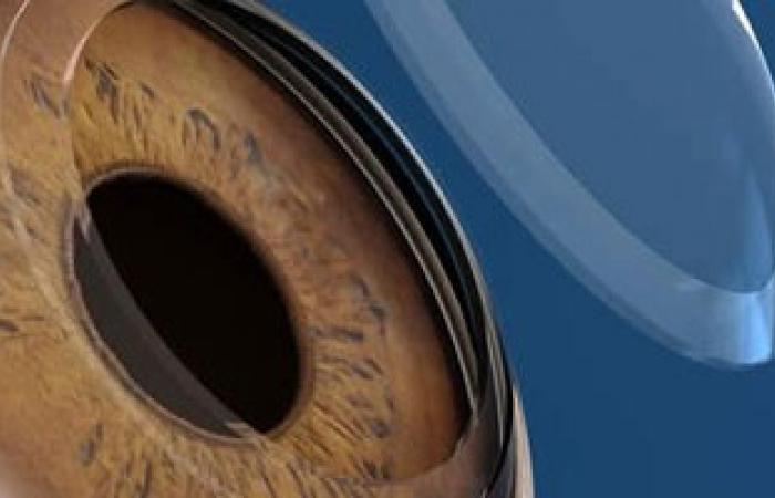الجارديان: إمكانية استخدام الخلايا الجذعية الجنينية فى استعادة البصر