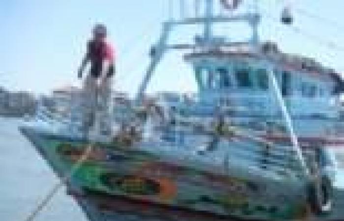 ترخيص مركبين في البحر الأحمر للصيد بالشانشولا لزيادة الثروة السمكية