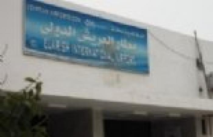 جاد الكريم نصر: مطار العريش جاهز للتشغيل ولم يتم إغلاقه