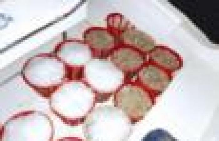 «الزراعة»: مصادرة 35 سلة روبيان  و9 لنجات إيرانية في المياه الكويتية