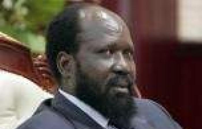تشكيل حكومة جديدة في جنوب السودان