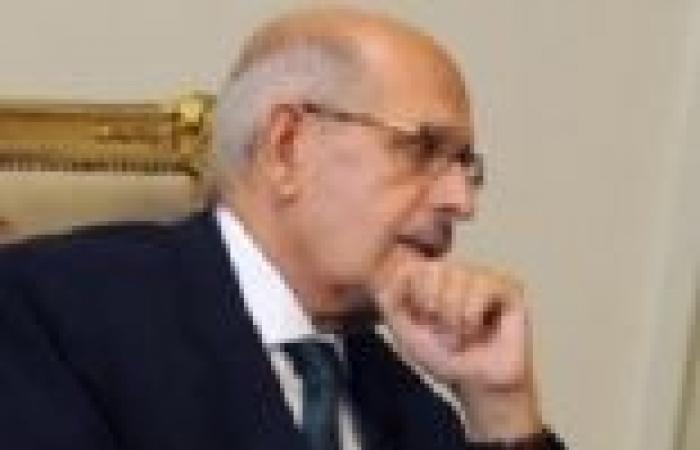 البرادعي: لن أستقيل بسبب الهجوم عليّ.. والسيسي أخبرني بأنه لن يترشح للرئاسة
