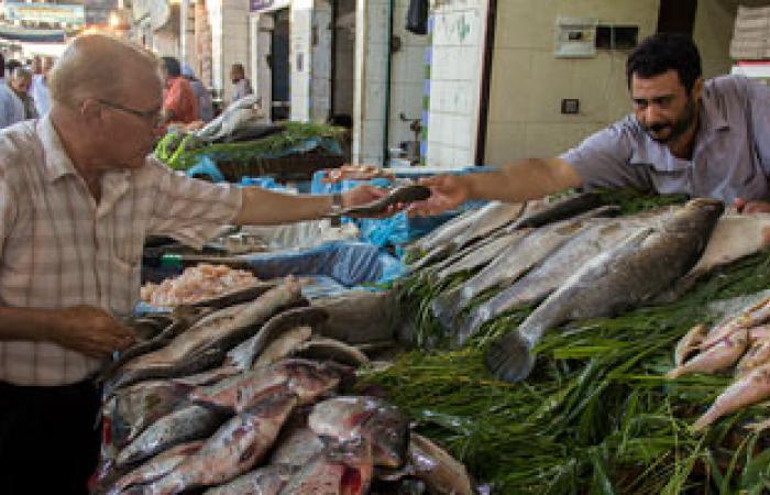 حملات لمراقبة الأسماك الطازجة والمدخنة والمملحة بالإسكندرية