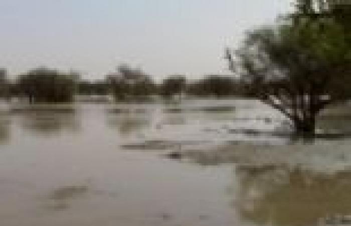 توفير مواد إيواء بقيمة مليار جنيه لمتضرري السيول في الخرطوم