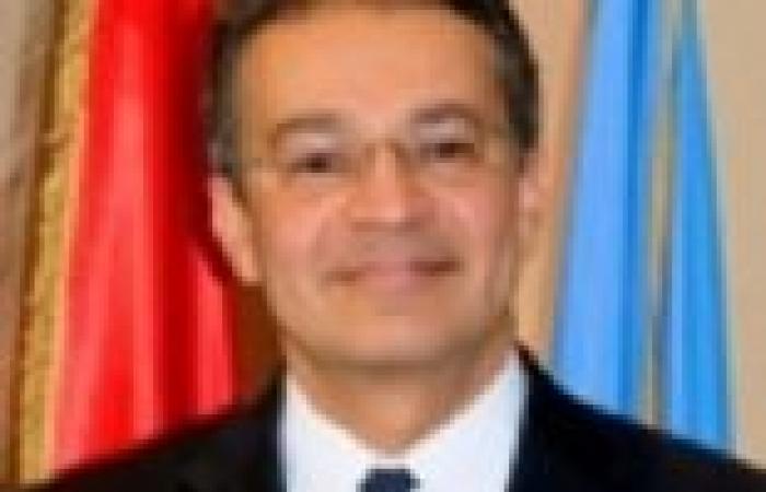 أحمدين يستبعد عقد جلسة رسمية لمجلس الأمن لمناقشة الأوضاع في مصر