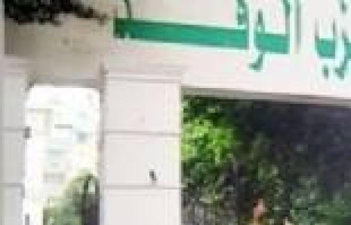"""شباب """"الوفد"""" بأسيوط: دعوات انفصال الصعيد عن مصر خيانة عظمى.. ويجب إسقاط الجنسية عمن أطلقها"""