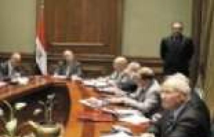 لجنة الدستور تدخل صياغات لغوية على التعديلات الدستورية