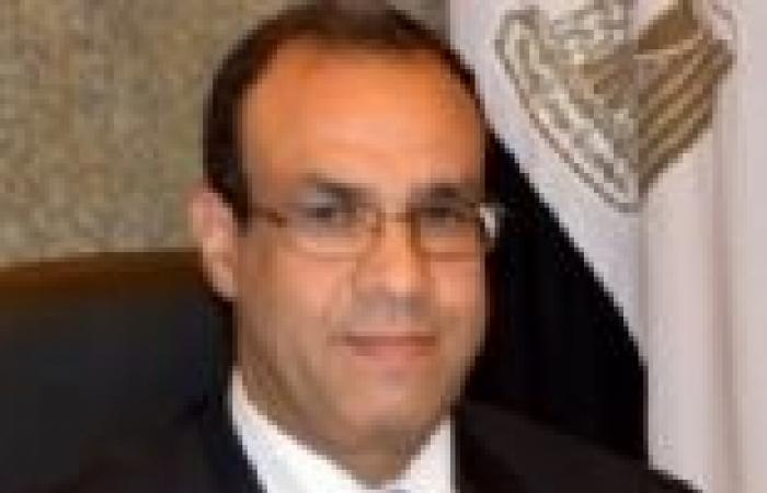 """""""الخارجية"""": تحركات مكثفة للسفارات المصرية لشرح حقيقة الأوضاع الراهنة"""