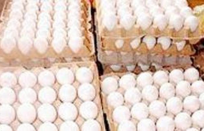 ارتفاع أسعار البيض يرفع الساندوتش إلى 3 ريالات