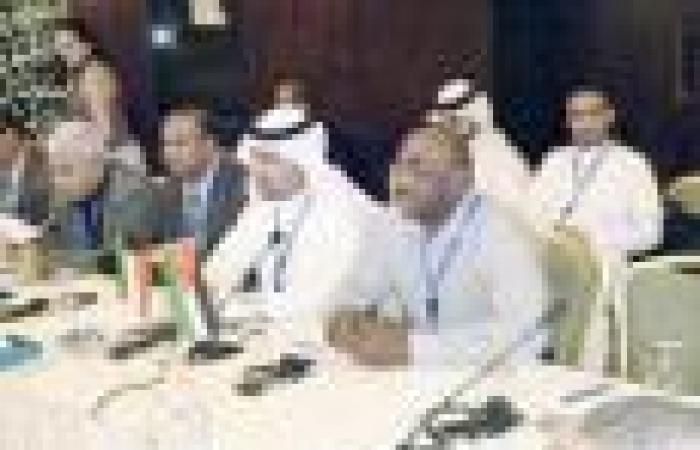 المساعيد: سنعيد للبرلمان تعديلات  خصخصة «الكويتية» التي أقرّها المجلس المنحل