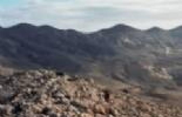 """جهاديون في سيناء يهددون مخرج """"جبل الحلال"""" لوقف عرضه"""