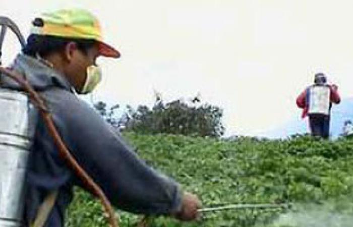 الزراعة: بدء المفاوضات المصرية اللبنانية لتوحيد تسجيل وتداول المبيدات