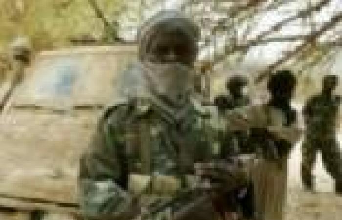 """الجزائر تدين الهجوم على بعثة """"يوناميد"""" في دارفور"""