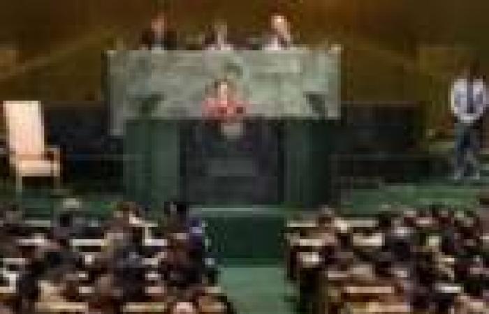 عضوة مكتب الأمم المتحدة: هيئة مكافحة الفساد لابد أن تستقل بذاتها