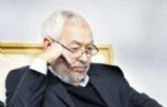 «الغنوشى» يواصل تجاوزاته ويطالب الدول الغربية بالتدخل ضد مصر