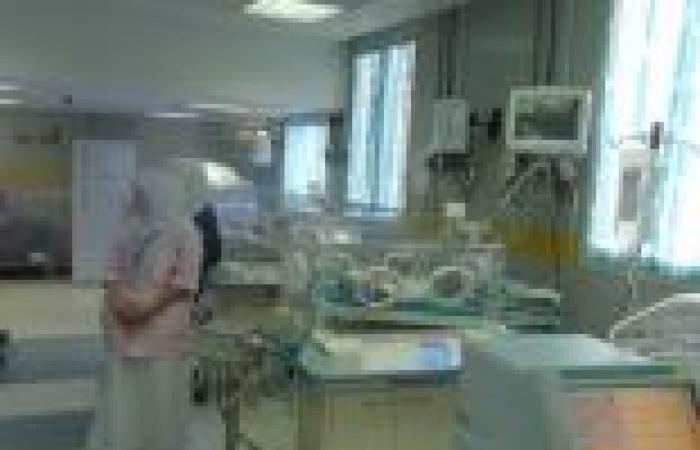 نائب رئيس «الغذائية»: 80٪ من المصابين بالفشل الكلوى والسرطان بسبب الجبن الفاسد
