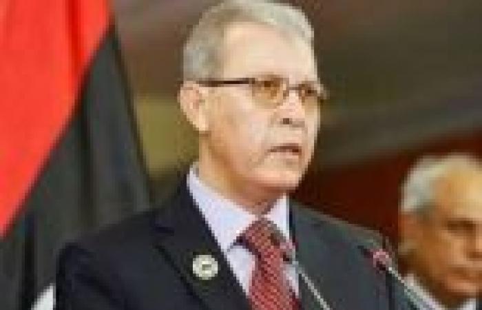 وزير الاقتصاد الليبي: تأسيس منطقة اقتصادية حرة مع مصر