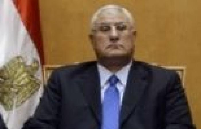 """""""منصور"""" يعلن رسميا إجراء الاستفتاء يومي 14 و15 يناير"""