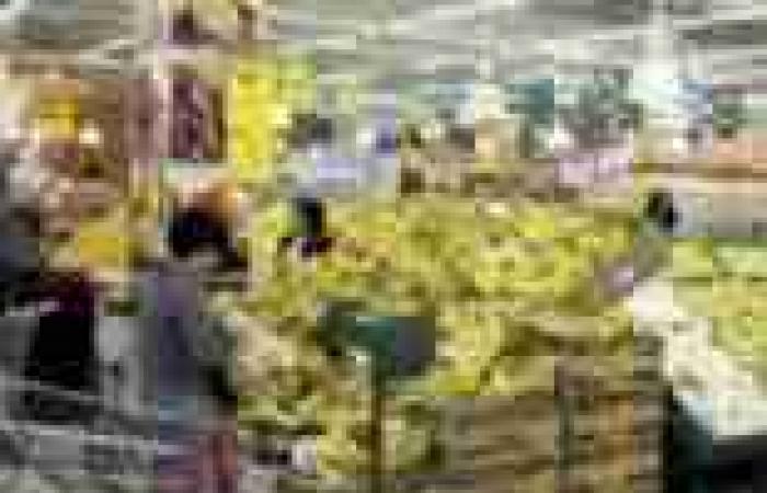 """""""المجمعات الاستهلاكية"""" تعاني نقص الـ25 قرش المعدني وتوفر الجنيه"""