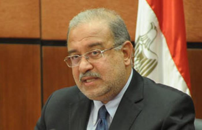 ميناء السويس والإسكندرية يستقبلان 84 ألف طن سولار وبوتاجاز