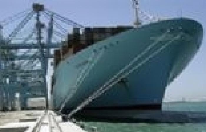 ميناء دمياط يستقبل 27200 طن قمح و5 آلاف طن زيت