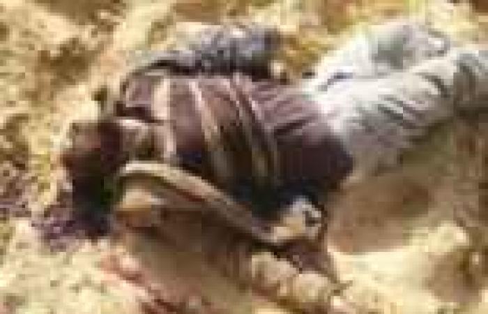 سيناء: الجيش يقبض على 11 إرهابياً بينهم أحد أكبر ممولى العمليات.. ويدمر 34 بؤرة