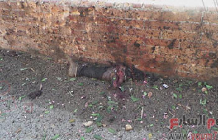 المنظمة المصرية لإدارة الأزمات وحقوق الإنسان تدين تفجيرات سيناء والقاهرة