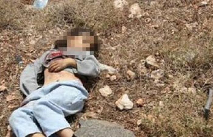 إسعاف البحر الأحمر: العثور على طفلة رضيعة متوفاة داخل صندوق قمامة