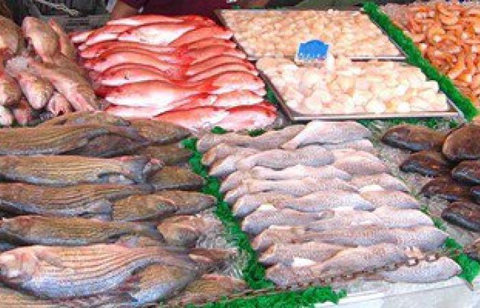 سوق السمك: 13 جنيهًا للبلطى و170 جنيهًا سعر الجمبرى