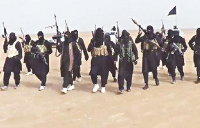 داعش يسقط طائرة حربية جنوب دمشق