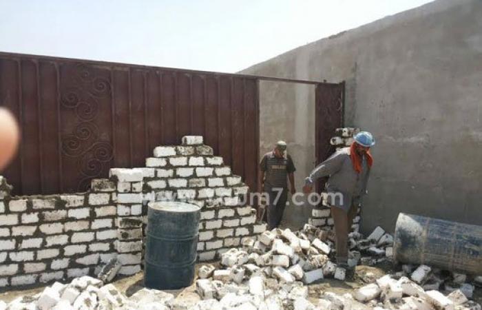 حبس صاحب شونة غلال لمحاولته ترويج 10 آلاف طن مخلوطة بالحشرات فى الشرقية