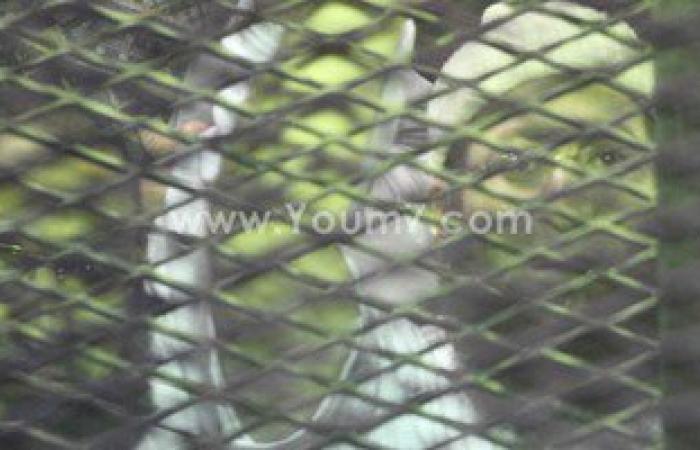"""استئناف محاكمة 36 متهما من أعضاء """"خلية الصواريخ"""" اليوم"""