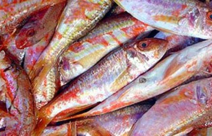 """""""الزراعة"""": طرح 713 طن سلع غذائية وأسماك و144 ألف كيلو لحوم بـ114 منفذًا"""