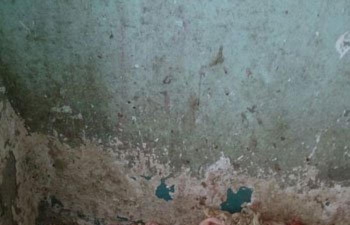 بالصور..حبس صاحب ثلاجة اللحوم الفاسدة 4 أيام بسوهاج