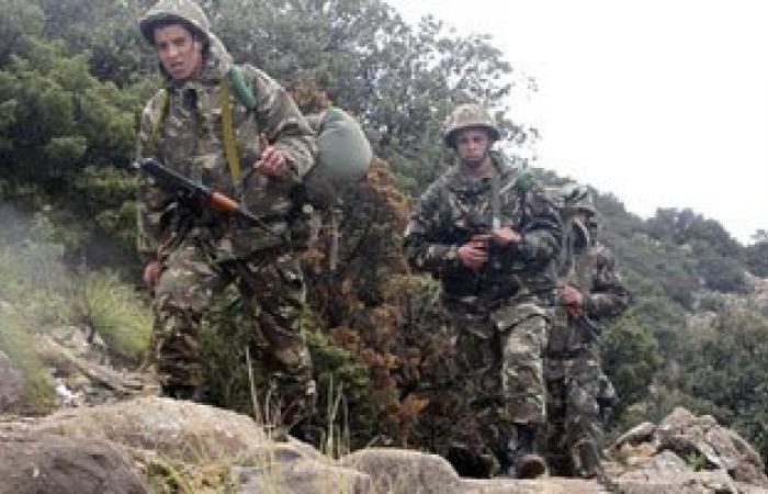 الجيش الجزائرى يقضى على 145 إرهابيا خلال عام 2015