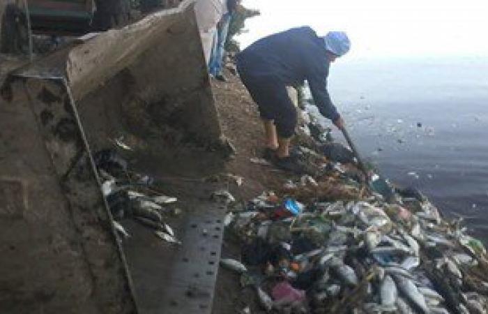 تشغيل جميع محطات المياه بالبحيرة بعد توقفها لمواجهة نفوق الأسماك