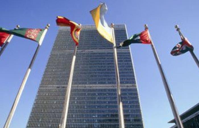 سفير مصر بالأمم المتحدة:على واشنطن احترام حقوق الإنسان قبل التشهير بالآخرين