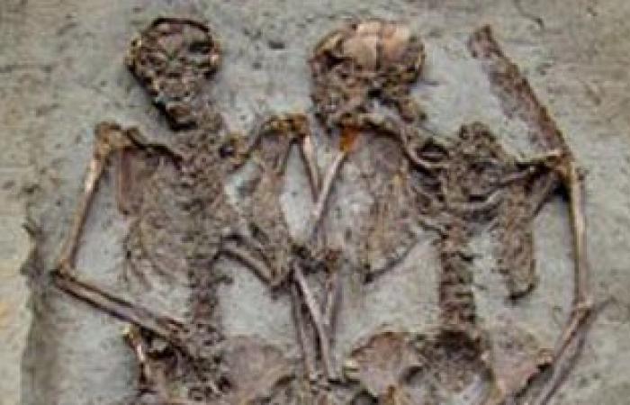 اكتشاف أقدم وأكمل جهاز عصبى بالصين يرجع لأكثر من 500 مليون سنة