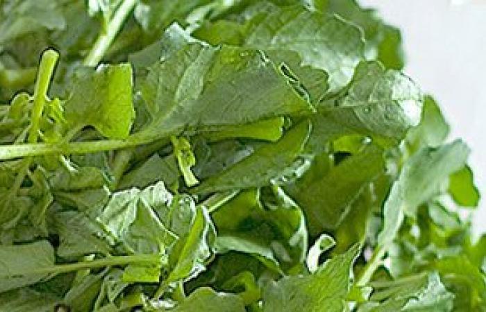 فى أول أيام الربيع.. 12 أكلة طبيعية لمكافحة الحساسية أبرزها البصل والجرجير