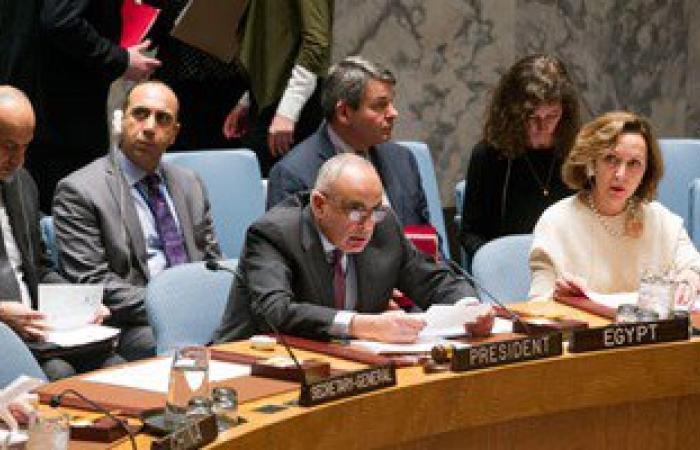 """مصر تتصدى لإرهاب جماعة """"بوكو حرام"""".. اقرأ ماذا حدث فى مجلس الأمن"""