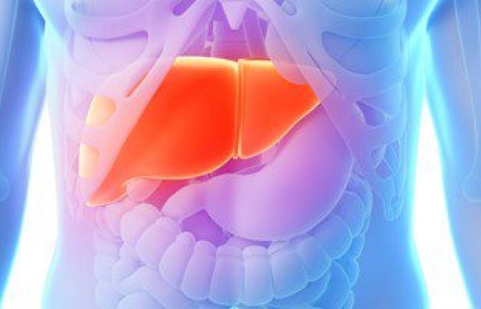 أستاذ باطنة: فيروسC قد يسبب مضاعفات خارج الكبد وتتحسن باستخدام الأدوية الجديدة