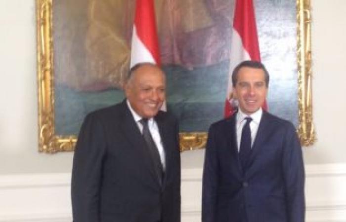 سامح شكرى يبلغ مستشار النمسا تلبية الرئيس السيسى لدعوته بزيارة فيينا
