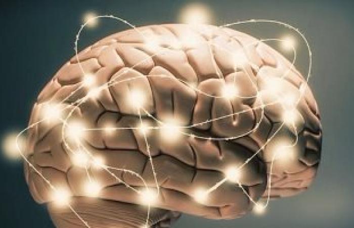 ابتكار عقار جديد لعلاج أضرار المخ الناتجة عن الإصابة بالسكتة الدماغية