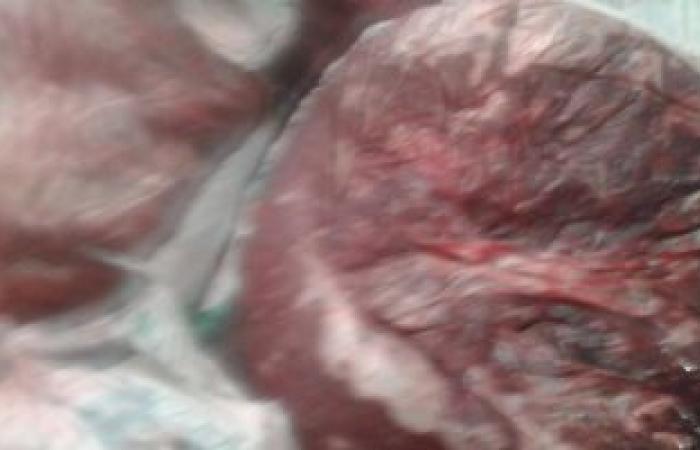 ضبط لحوم مذبوحة خارج المجازر وأسطوانات غاز مدعمة بمزارع دواجن بالغربية