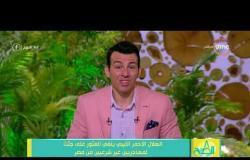 8 الصبح - الهلال الأحمر الليبي ينفي العثور على جثث لمهاجريين غير شرعيين من مصر