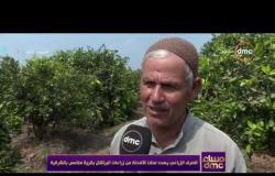 مساء dmc - الصرف الزراعي يهدد مئات الافدنة من زراعات البرتقال بقرية ملامس بالشرقية