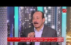 د.جمال عبدالجواد: الدور المصري في قطاع غزة مهم ولن يقوم به أحد غيرها