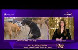 مساء dmc - | موافقة وزارة الزراعة على تصدير 4100 كلب وقطة تثير جدلاً واسعاً |